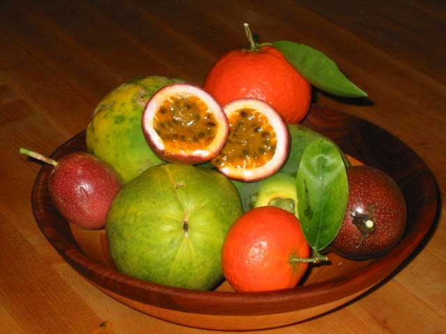 picture of tropical fruit by Isabella Gioia